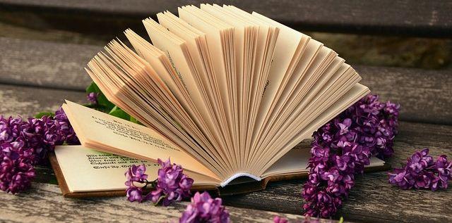 book-760021_640